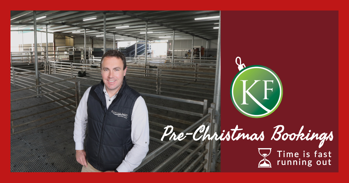 Koallah Farm Christmas Bookings